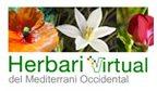 Herbari Virtual del Mediterrani Occidental