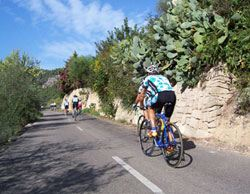 Cycling in Mallorca: Andratx