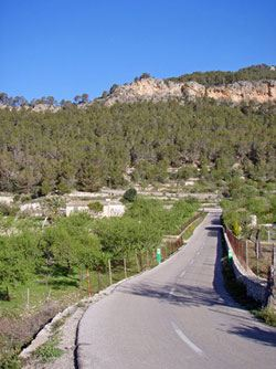 Cicloturismo en Mallorca, ruta: Andratx