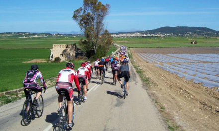 Cycling in Mallorca: Route Manacor