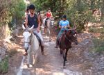 Equestrianism, an exclusive sport, Mallorca
