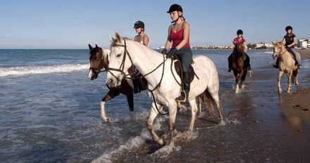 Equestrianism, an exclusive sport within everybody's reach