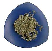 Licor d'Herbes de Mallorca, herbes mallorquines