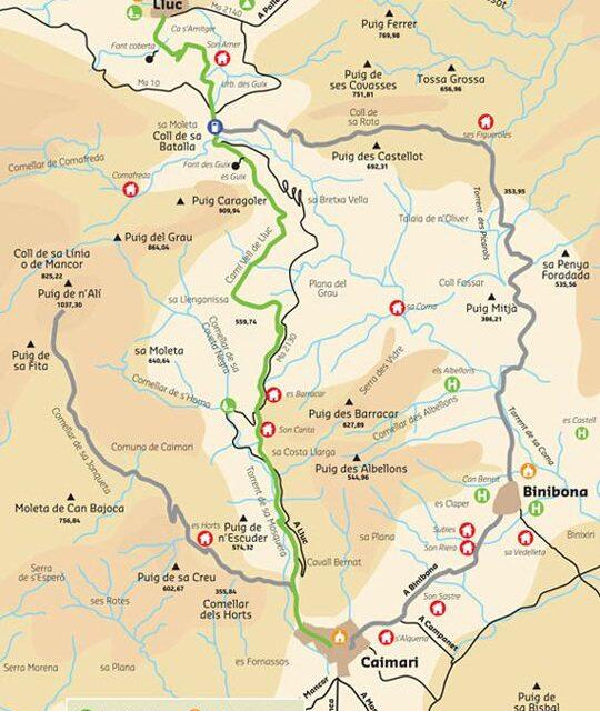 La ruta verde del olivo (II)