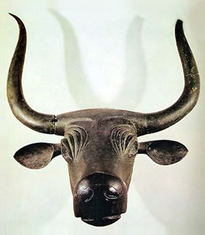 Bulls of Costitx - Mallorca