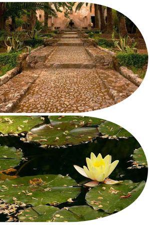 jardins-d-Alfabia_2