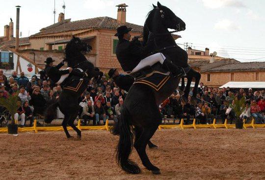 La 'Festa de's cavall' de Ses Salines, el 'jaleo' Mallorquín