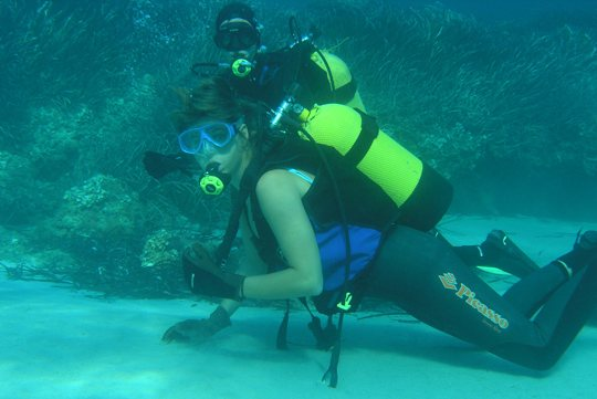 Sporting and Leisure: Scuba diving in Mallorca
