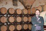 Vins-Miquel-Gelabert-1