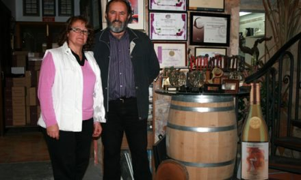 Vinos Miquel Gelabert, artesanos del vino