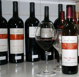 Vins-Miquel-Gelabert-3