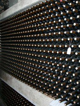 Vins-Miquel-Gelabert-4