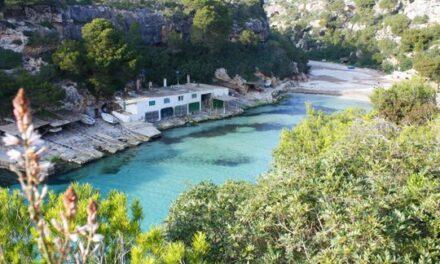 Cala Pi, a paradise to discover