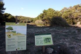De-sa-Barca-Trencada-a-Mondrago-Parque-Natural-28