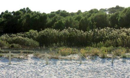 Mondragó, Parque Natural