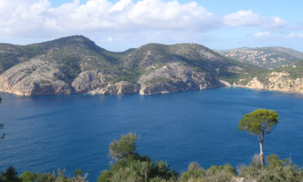 Excursió a Peguera, Cap Andritxol