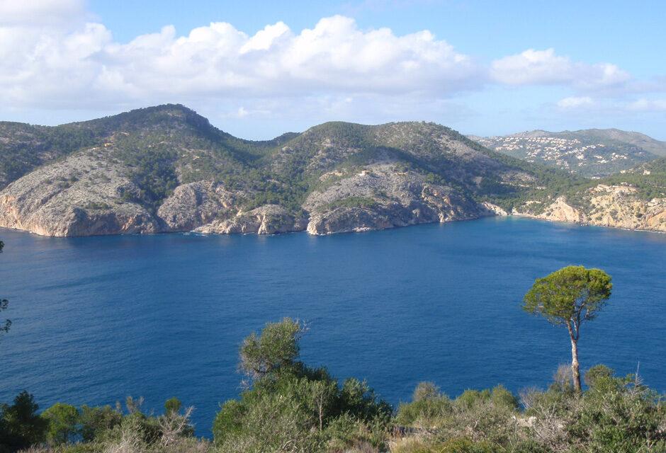 Excursión en Peguera, Cap Andritxol