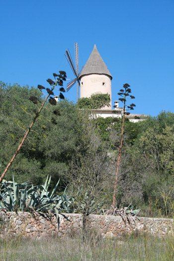 Santa Eugenia, Biniali y Ses Alqueries, Pla de Mallorca