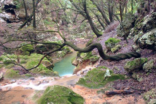 Es-Salt-des-Freu-excursiones-en-Mallorca-5