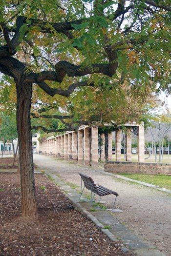 parques-urbanos-palma-de-mallorca-3