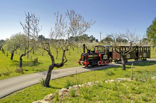 Mallorca Wine Express, tourist train. Wine tasting