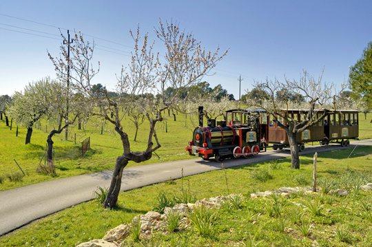 mallorca-wine-express-bodegas-train-tour-3