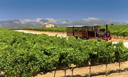Próxima estación: Los viñedos