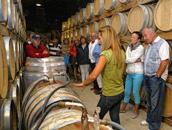mallorca-wine-express-bodegas-train-tour-6