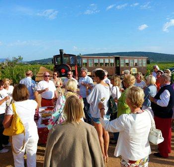 mallorca-wine-express-bodegas-train-tour-1