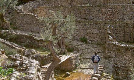 Piedra seca, un arte desarrollado y perfeccionado popularmente