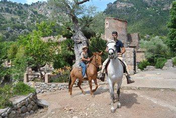 torrent-de-na-mora-mallorca-balitx-horses