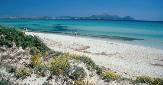 Las playas de Muro, entre las más bellas del mundo
