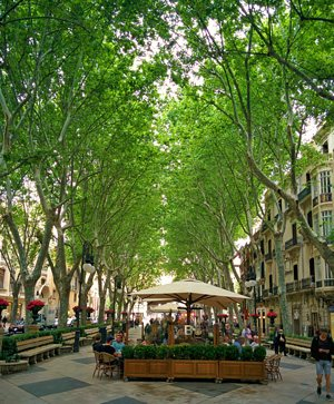 Chic shopping and tapas along El Born, Palma, Mallorca