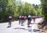 Cycletourism route: Palma-Capdellà-Esporles