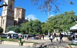 El mercat de Sant Magí de Palma