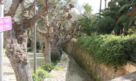 El pueblo de Pina, Mallorca